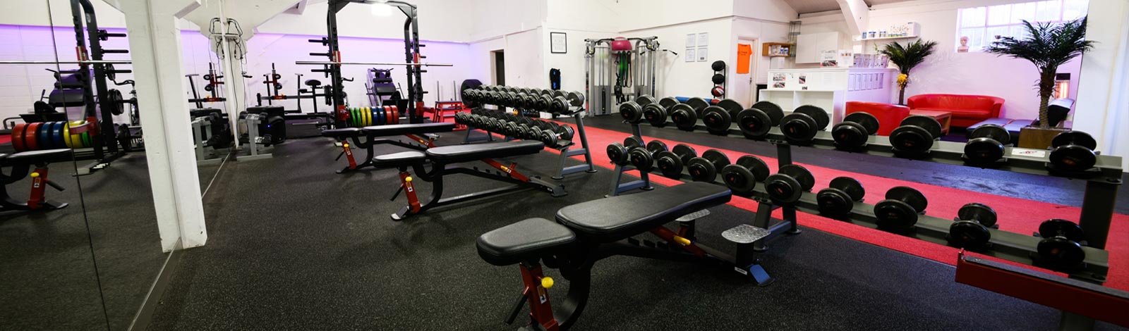 Weights and benches in gym